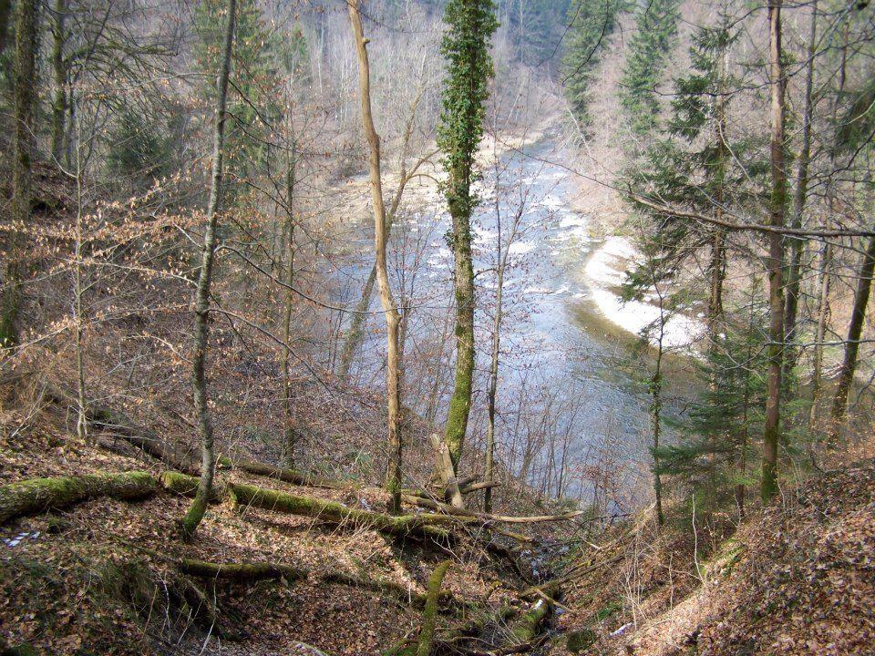 Fluss 2 Hasenweg
